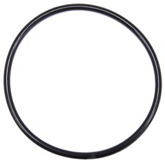 090.2551 O-Ring - 2.750