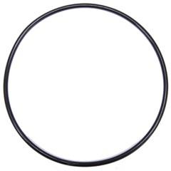 090.2555 O-Ring - 4.171