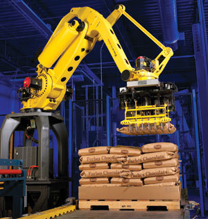 Palletizing Robot for Distribution Center Automation