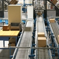 cartons-leaving-lidding-machines